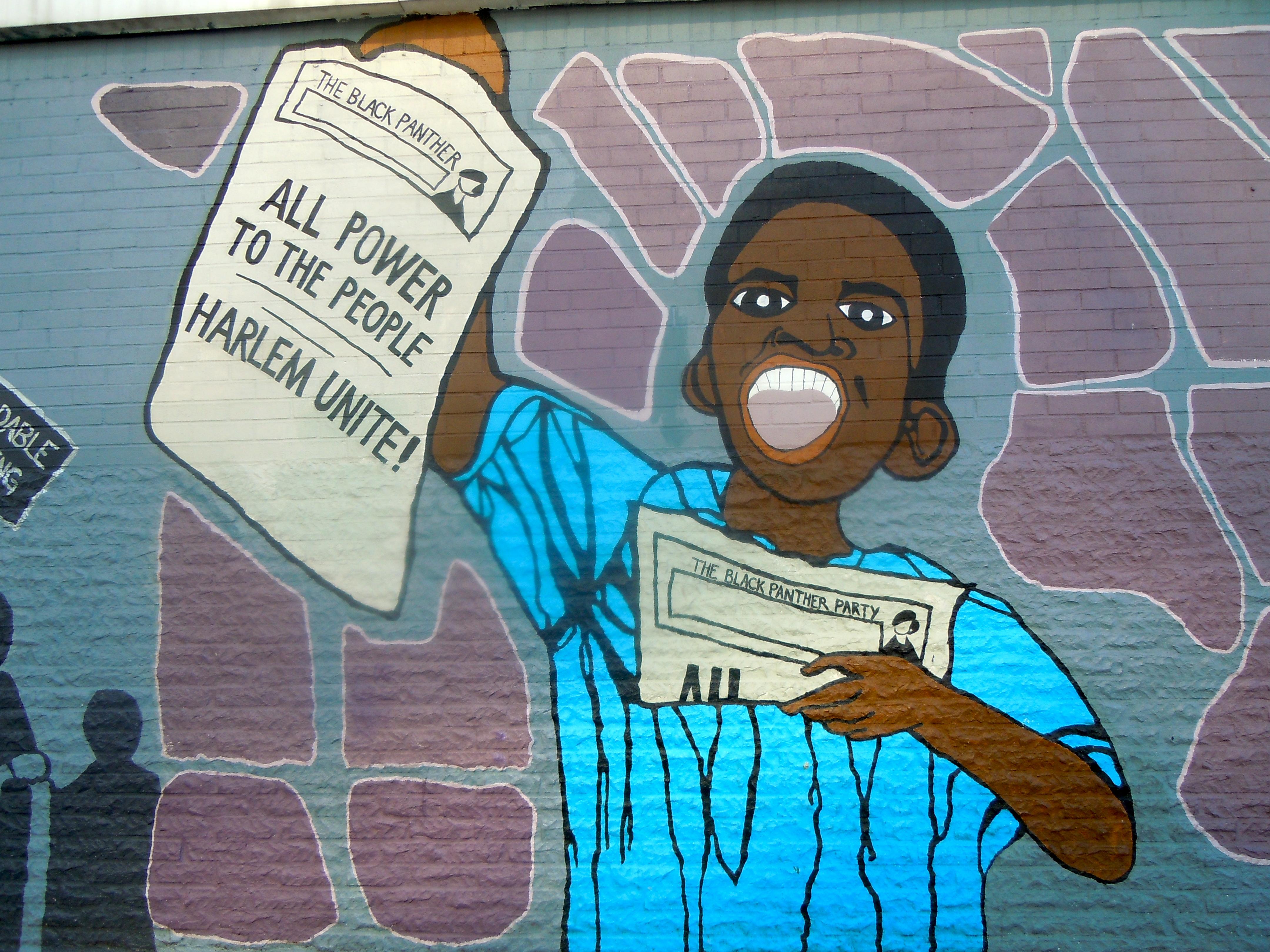 Qu'est-ce que la lutte des races sociales ?